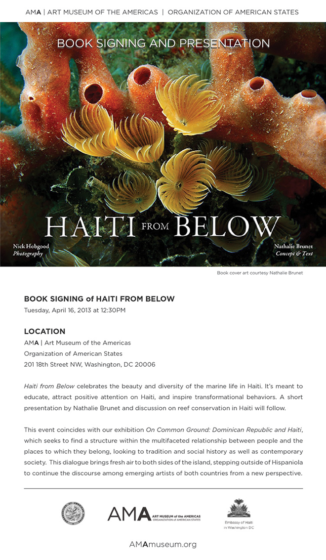 haiti below flyer